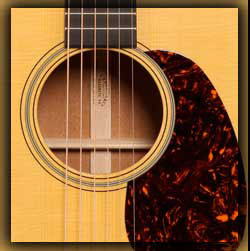 Martin Acoustic-Electric Guitars