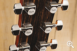 Taylor 600 Series Maple Guitar with Nickel Tuners