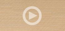Maple Guitar Tonewood Review